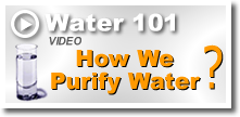 How to purify water -Water 101